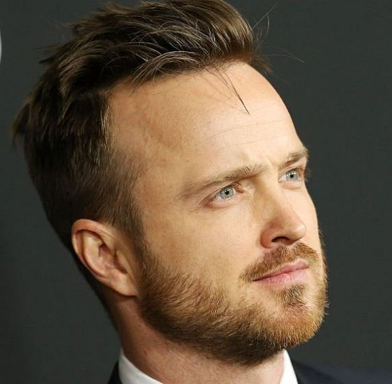How much is Aaron Paul worth