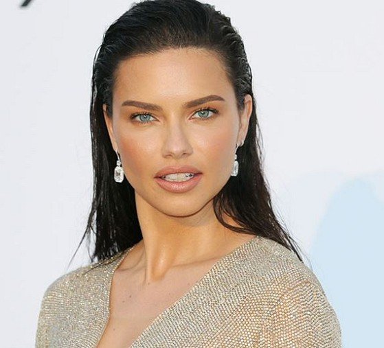 How much is Adriana Lima worth