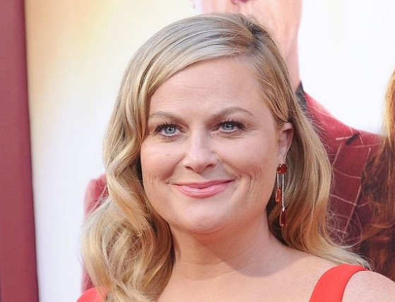 How much is Amy Poehler worth