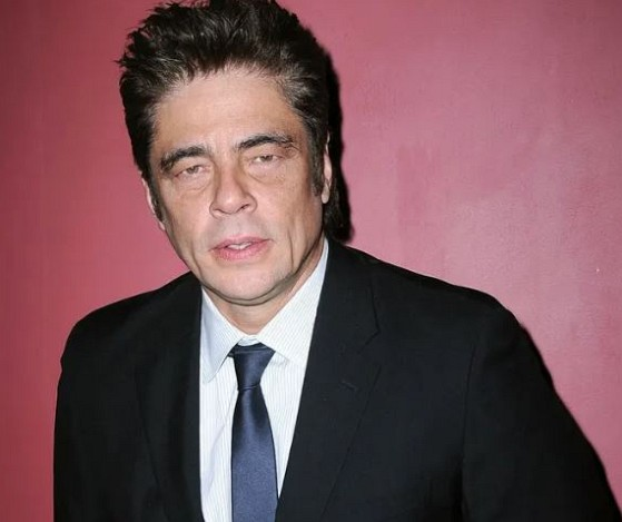 How much is Benicio Del Toro worth