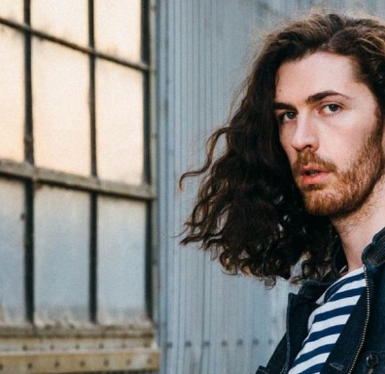 How much is Hozier worth